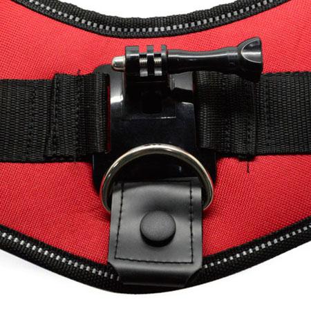 GoPro Dog Harness Mount SJ4000 SJCAM Canada